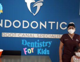 tj endodontics